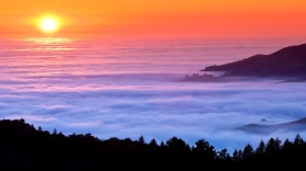Sea of Fog