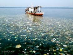 Massive trash slick found off of the coast of java in Indonesia. Photo: Zak Noyle/A-Frame