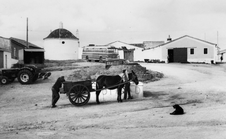 alentejo-safara-1986